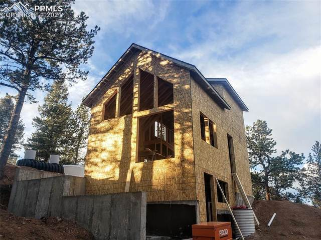 50 Joseph Road, Woodland Park, CO 80863 (#2062088) :: The Gold Medal Team with RE/MAX Properties, Inc
