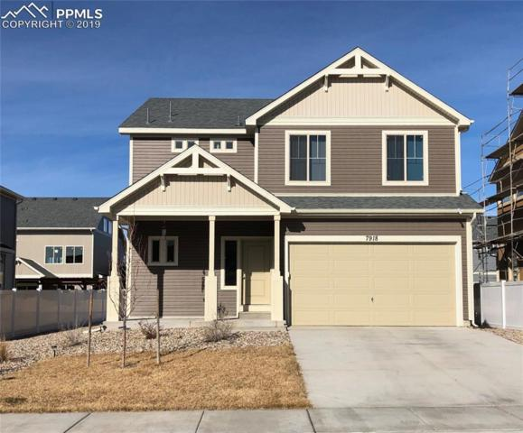 7918 Whistlestop Lane, Fountain, CO 80817 (#2068463) :: Action Team Realty