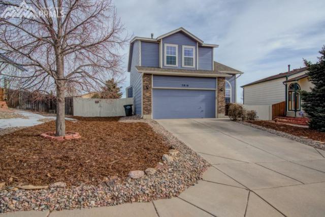 7816 Ultra Drive, Colorado Springs, CO 80920 (#2146481) :: 8z Real Estate