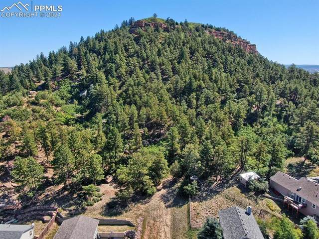 Oakdale Terrace, Palmer Lake, CO 80133 (#2148216) :: Fisk Team, RE/MAX Properties, Inc.