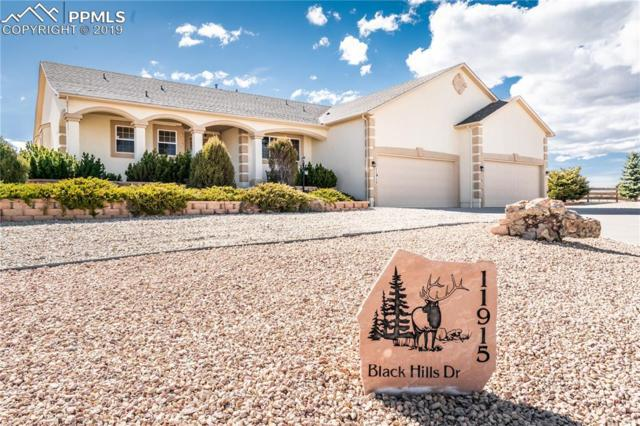 Black Hills Drive, Peyton, CO 80831 (#2156393) :: The Peak Properties Group