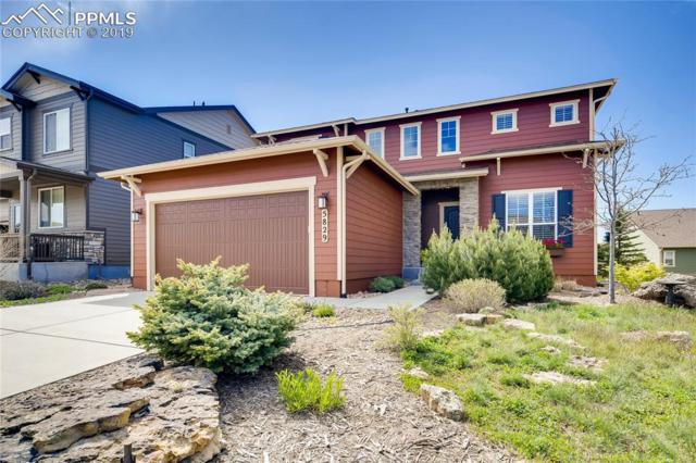 5829 Rowdy Drive, Colorado Springs, CO 80924 (#2225014) :: CC Signature Group