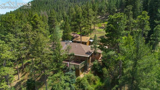 10145 Mountain Road, Chipita Park, CO 80809 (#2235570) :: Jason Daniels & Associates at RE/MAX Millennium