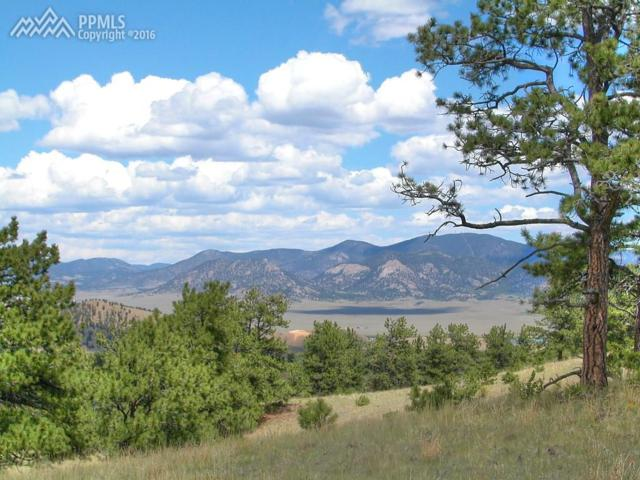 5291 County 116 Road, Lake George, CO 80827 (#2258678) :: 8z Real Estate
