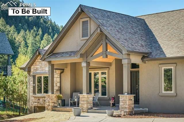 985 Locklin Way, Woodland Park, CO 80863 (#2273026) :: 8z Real Estate