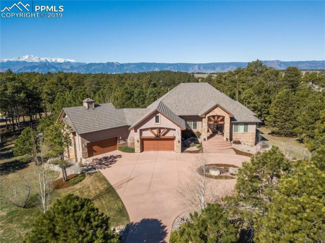 16212 Timber Meadow Drive, Colorado Springs, CO 80908 (#2282420) :: Action Team Realty