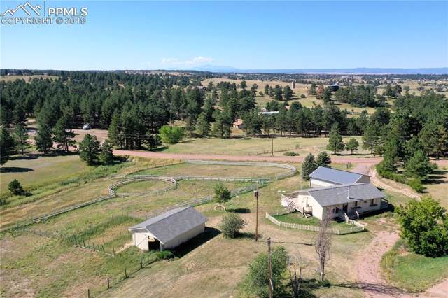 11724 E Basswood Lane, Franktown, CO 80116 (#2306431) :: CC Signature Group