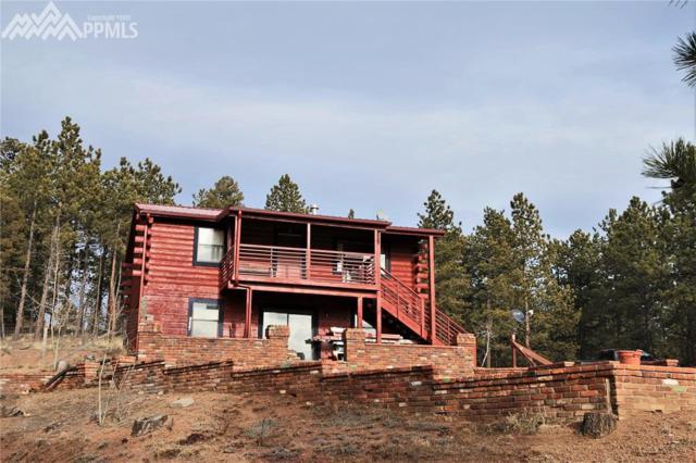 1133 W Bison Creek Trail, Divide, CO 80814 (#2306890) :: 8z Real Estate
