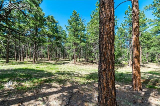 1460 Trumpeters Court, Monument, CO 80132 (#2316781) :: 8z Real Estate