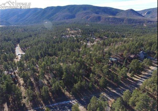 4500 Shoshone Drive, Larkspur, CO 80118 (#2323407) :: Action Team Realty