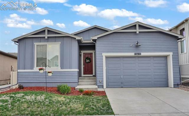 8750 Dry Needle Place, Colorado Springs, CO 80908 (#2352721) :: Hudson Stonegate Team