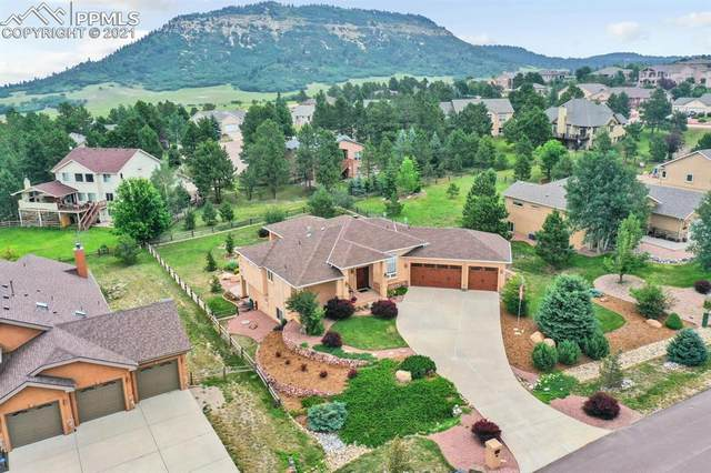 1662 Plowman Drive, Monument, CO 80132 (#2393424) :: Action Team Realty