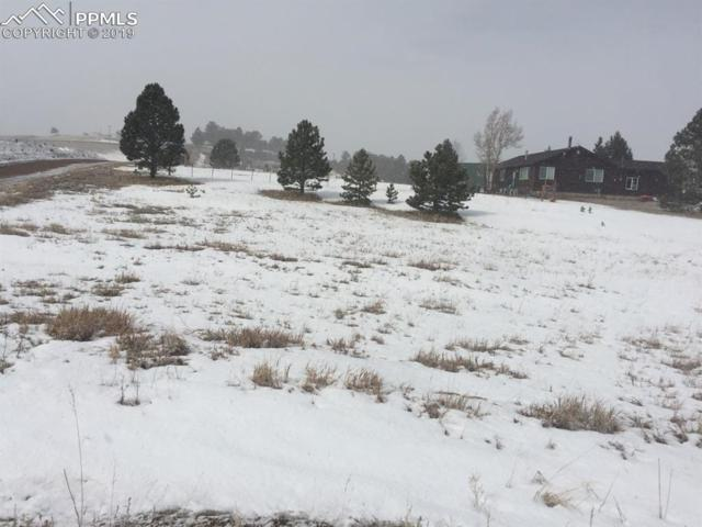 TBD Herald Lane, Divide, CO 80814 (#2398567) :: Venterra Real Estate LLC