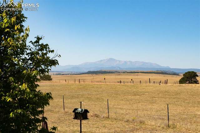 7516 Se Cherry Creek Road, Franktown, CO 80116 (#2413891) :: The Gold Medal Team with RE/MAX Properties, Inc