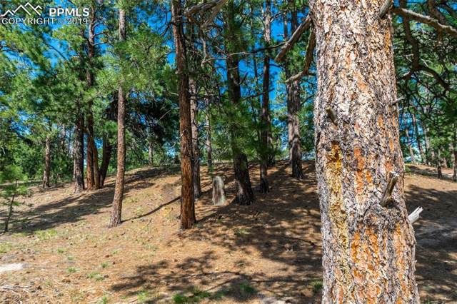 18845 Hilltop Pines Path, Monument, CO 80132 (#2414219) :: 8z Real Estate