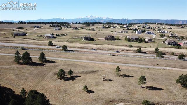 3346 Blue Heron Spring Lane, Colorado Springs, CO 80908 (#2430638) :: 8z Real Estate