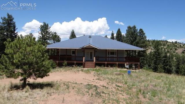 14 Apache Trail, Florissant, CO 80816 (#2489440) :: Jason Daniels & Associates at RE/MAX Millennium