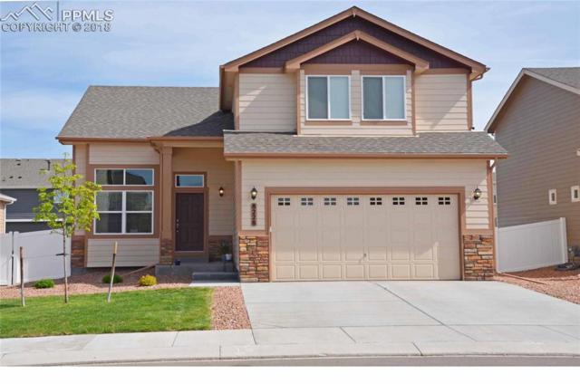 8228 Wagon Spoke Trail, Fountain, CO 80817 (#2494592) :: Harling Real Estate