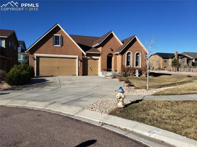 5862 Paladin Place, Colorado Springs, CO 80924 (#2507351) :: Harling Real Estate