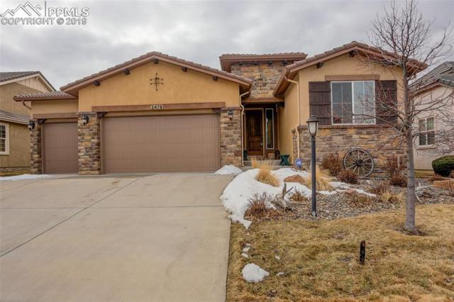 2479 Pine Valley View, Colorado Springs, CO 80920 (#2540110) :: CENTURY 21 Curbow Realty