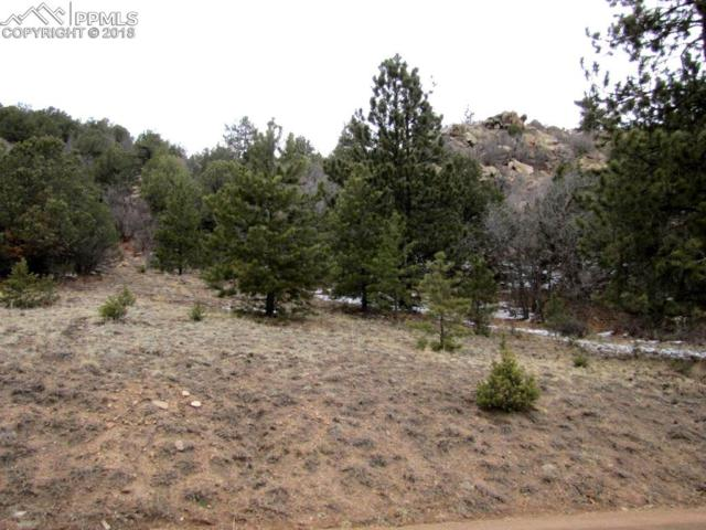 TBD Taylor Trail, Canon City, CO 81212 (#2542142) :: Action Team Realty