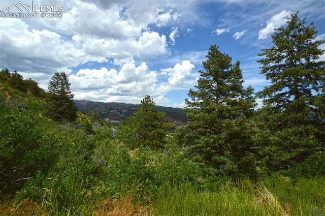 1096 Laguna Point, Manitou Springs, CO 80829 (#2574422) :: The Treasure Davis Team