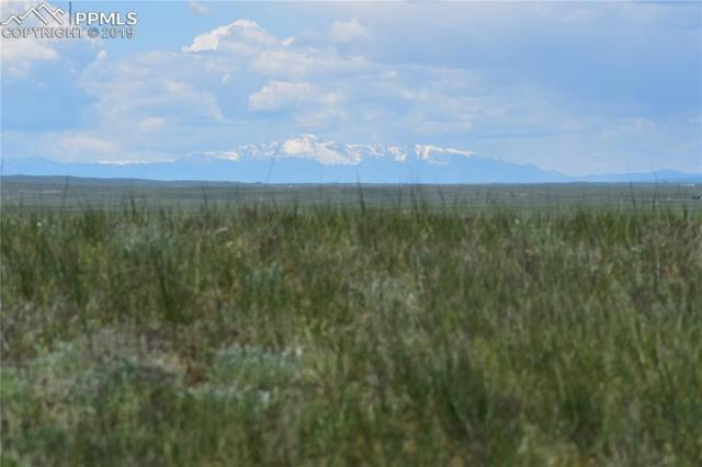 Highway 24 Road, Matheson, CO 80830 (#2591240) :: The Treasure Davis Team