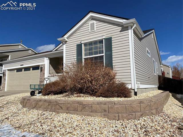 6684 Akerman Drive, Colorado Springs, CO 80923 (#2593711) :: 8z Real Estate