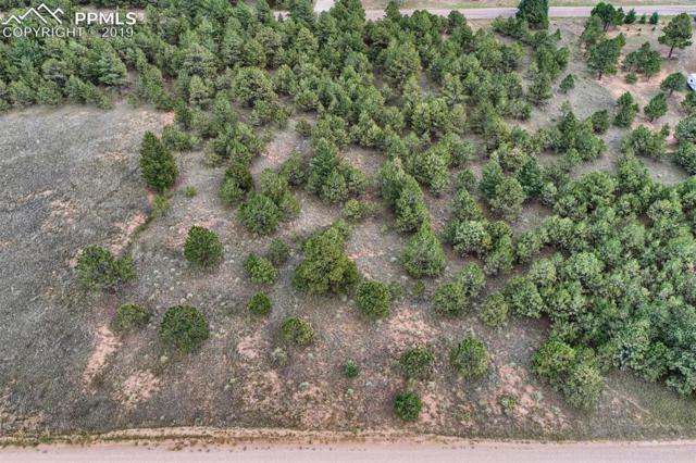 18365 Forest View Road, Monument, CO 80132 (#2621229) :: Action Team Realty