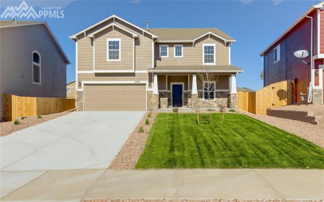 6838 Spruce Hill Court, Colorado Springs, CO 80923 (#2625310) :: 8z Real Estate