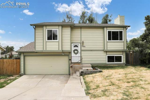 5525 Montgomery Terrace, Colorado Springs, CO 80917 (#2630922) :: The Artisan Group at Keller Williams Premier Realty