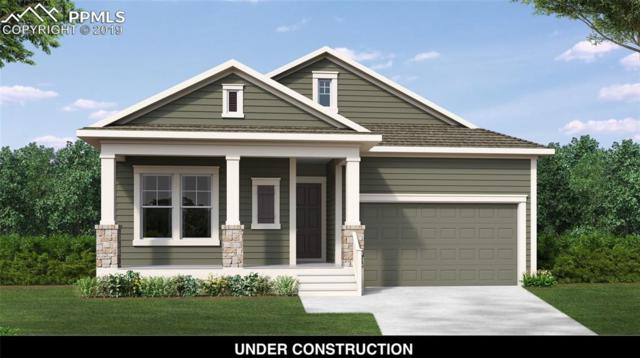 10072 Prima Run Place, Colorado Springs, CO 80924 (#2633635) :: Tommy Daly Home Team