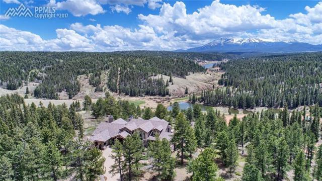 4145 Omer Road, Divide, CO 80814 (#2638609) :: Fisk Team, RE/MAX Properties, Inc.