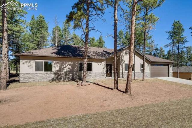 1314 Firestone Drive, Woodland Park, CO 80863 (#2652647) :: Fisk Team, RE/MAX Properties, Inc.