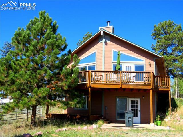 55 Crystal Peak Drive, Lake George, CO 80827 (#2656281) :: Fisk Team, RE/MAX Properties, Inc.
