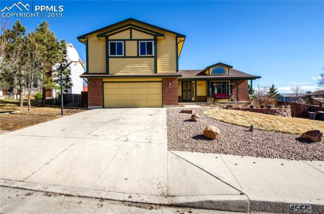4555 Squirreltail Drive, Colorado Springs, CO 80920 (#2666978) :: The Kibler Group