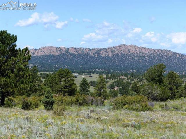 737 Dilley Road, Westcliffe, CO 81252 (#2698898) :: Action Team Realty