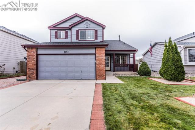 4255 Gracewood Drive, Colorado Springs, CO 80920 (#2735602) :: Action Team Realty