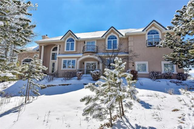 1245 Scarsbrook Court, Monument, CO 80132 (#2745293) :: Tommy Daly Home Team