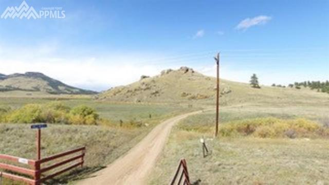 11683 Owls Nest Road, Guffey, CO 80820 (#2775782) :: 8z Real Estate