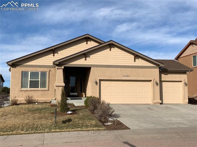 12604 Angelina Drive, Falcon, CO 80831 (#2797958) :: The Peak Properties Group