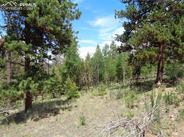 716 Pine Drive, Florissant, CO 80816 (#2811147) :: Compass Colorado Realty