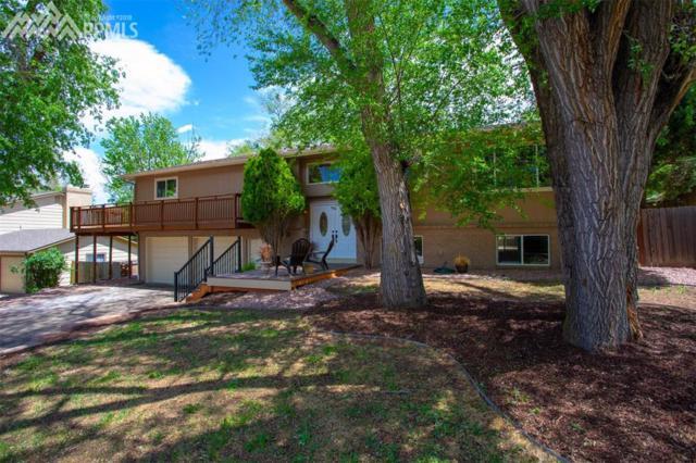 17 Newport Circle, Colorado Springs, CO 80906 (#2822870) :: 8z Real Estate