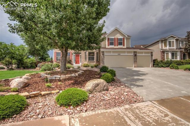 14408 Tierra Drive, Colorado Springs, CO 80921 (#2831255) :: Jason Daniels & Associates at RE/MAX Millennium