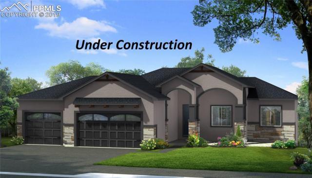 6772 David Anthony Court, Colorado Springs, CO 80922 (#2862262) :: 8z Real Estate