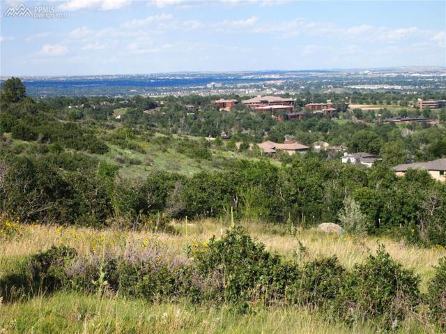 715 Overlook Ridge Point, Colorado Springs, CO 80906 (#2867766) :: 8z Real Estate