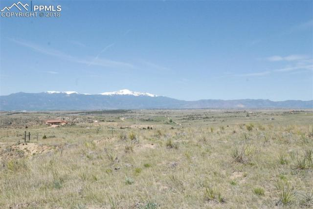 2738 Solberg Court, Peyton, CO 80831 (#2879833) :: 8z Real Estate