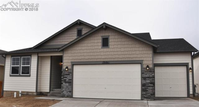 7001 Mustang Rim Drive, Colorado Springs, CO 80923 (#2884082) :: The Hunstiger Team