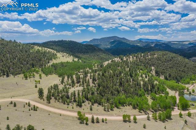 1306 County Road 122, Guffey, CO 80820 (#2892155) :: CC Signature Group