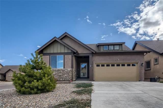 6591 Petaluma Point, Colorado Springs, CO 80923 (#2894278) :: 8z Real Estate